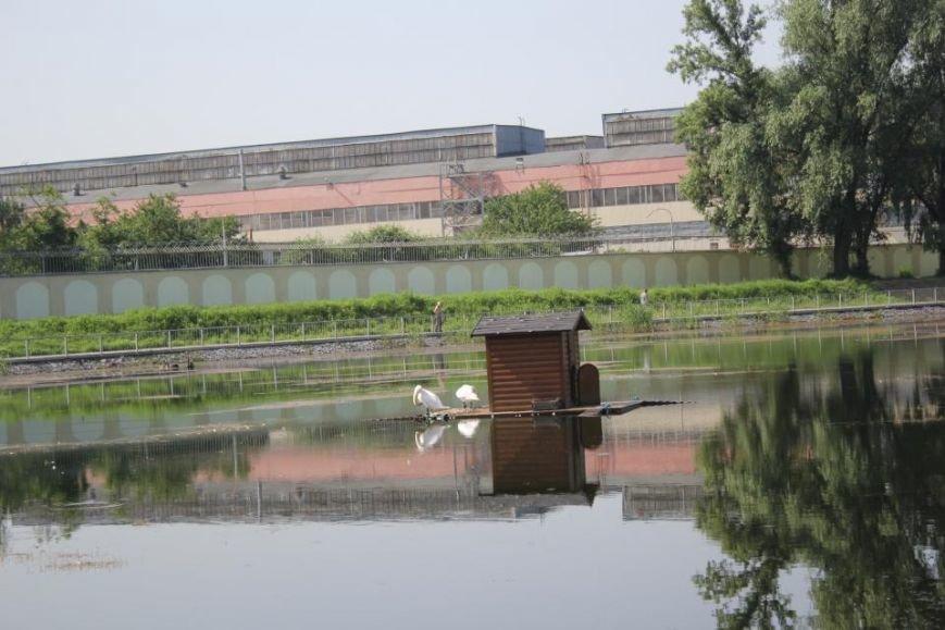 Строители в очередной раз планируют почистить озеро и установить скамейки в Городском саду до конца года (ФОТО), фото-1