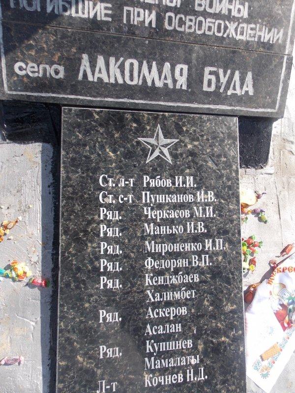 Памятник воинам, погибших при освобождении села Лакомая Буда (2)