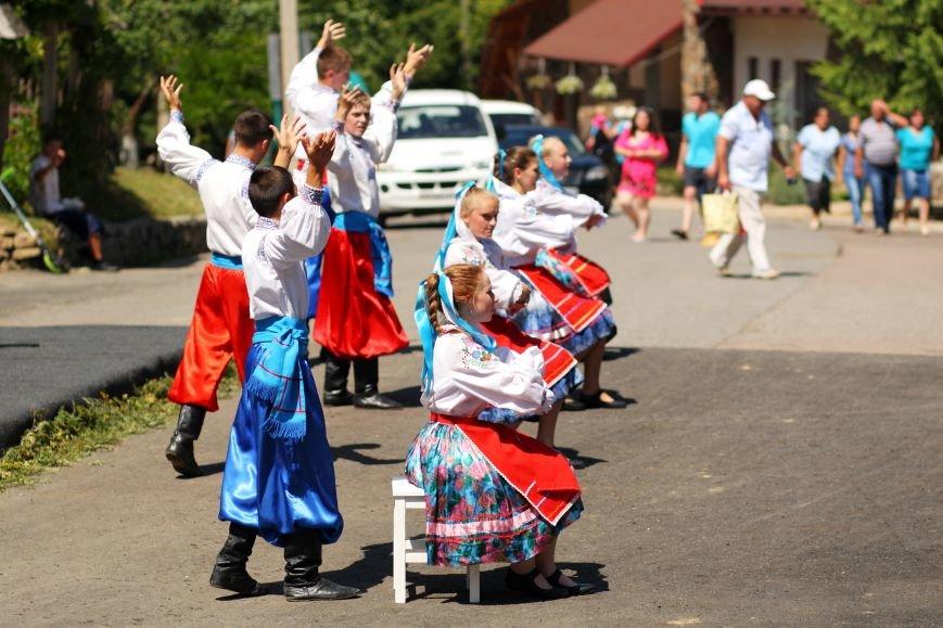 Відсвяткуйте Івана Купала разом з курортом Воєводино, фото-9