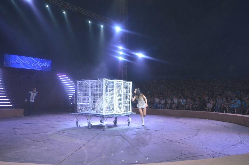 Тысячи мариупольцев увидели ангелов цирка, белого льва, тигра и трюки на высоте (ФОТО+ВИДЕО), фото-17