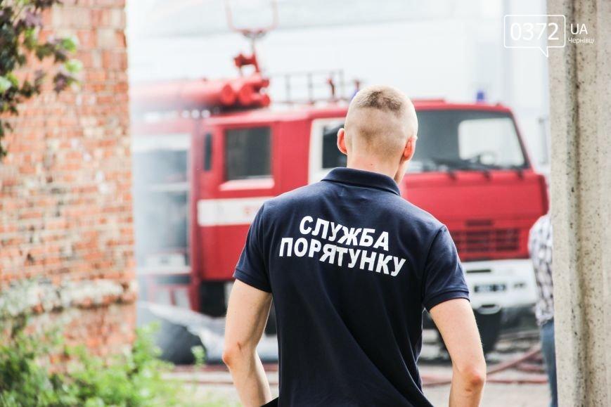 """Позаду приміщення """"Чернівцігаз"""" спалахнула масштабна пожежа(ФОТО), фото-18"""