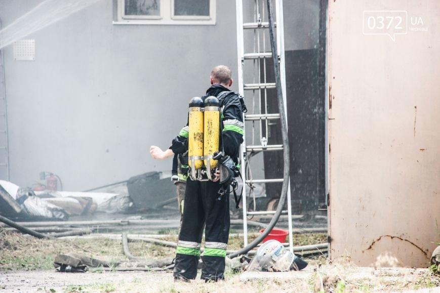 """Позаду приміщення """"Чернівцігаз"""" спалахнула масштабна пожежа(ФОТО), фото-16"""