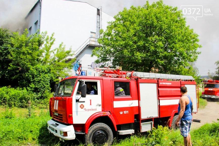 """Позаду приміщення """"Чернівцігаз"""" спалахнула масштабна пожежа(ФОТО), фото-5"""