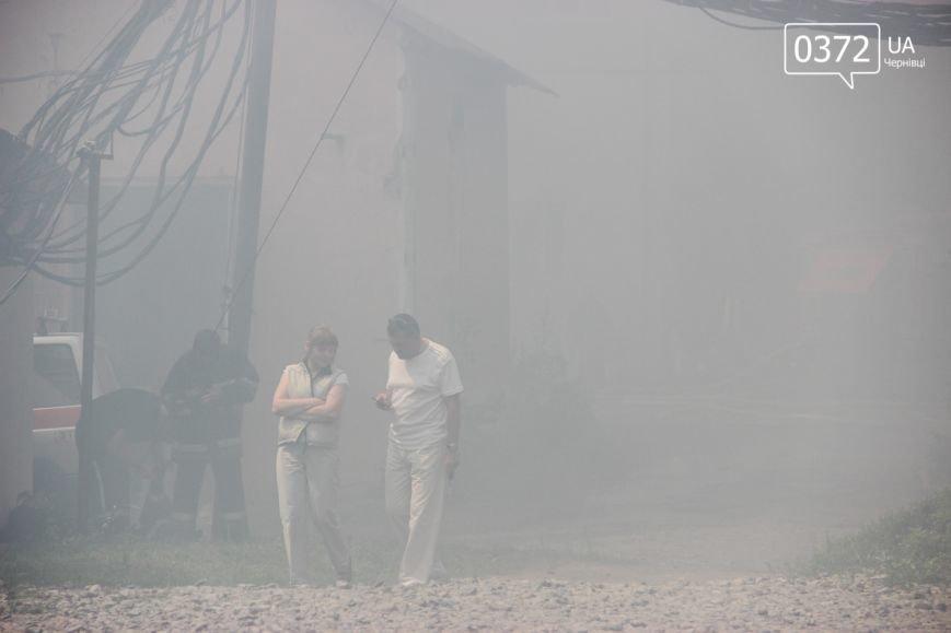 """Позаду приміщення """"Чернівцігаз"""" спалахнула масштабна пожежа(ФОТО), фото-12"""