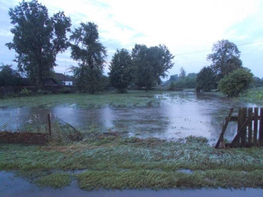 В Борзнянском районе из-за сильного ливня затопило два населенных пункта, фото-2