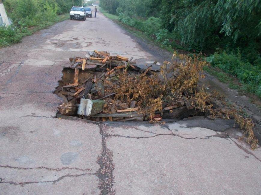 В Борзнянском районе из-за сильного ливня затопило два населенных пункта, фото-3