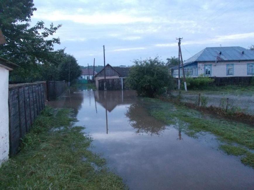 В Борзнянском районе из-за сильного ливня затопило два населенных пункта, фото-1