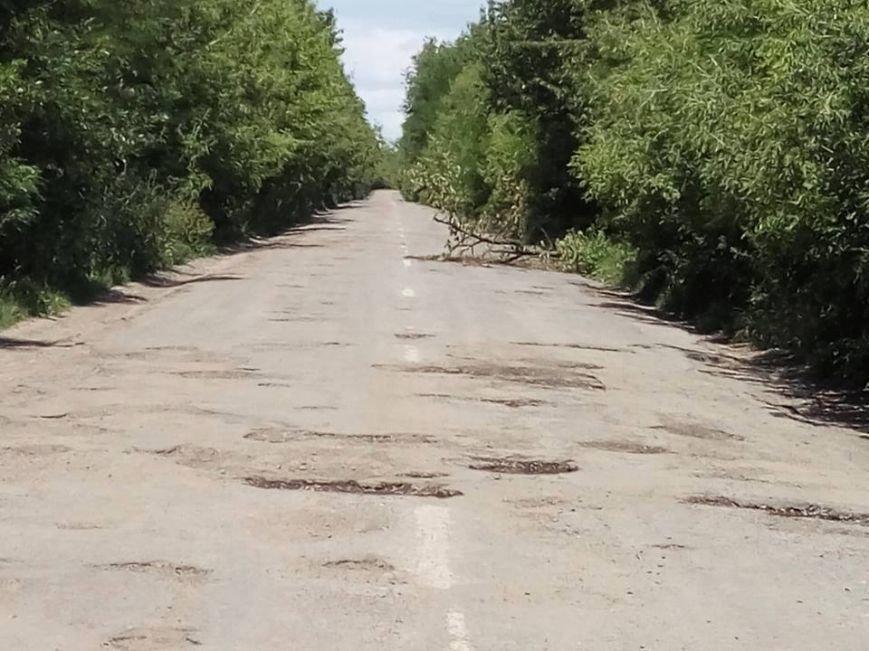 Тернопільська письменниця пропонує замінити недолугого керівника через пекло на дорозі (Фото), фото-2