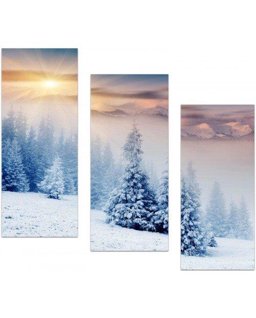 Зима ок-500x620