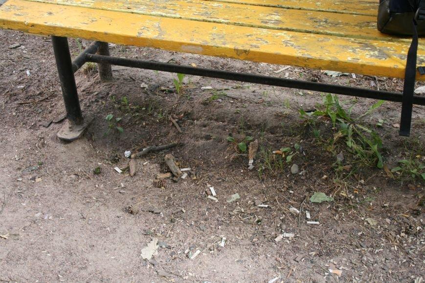Жильцы новостроек выразили недовольство уборкой детской площадки в Троицке, фото-3
