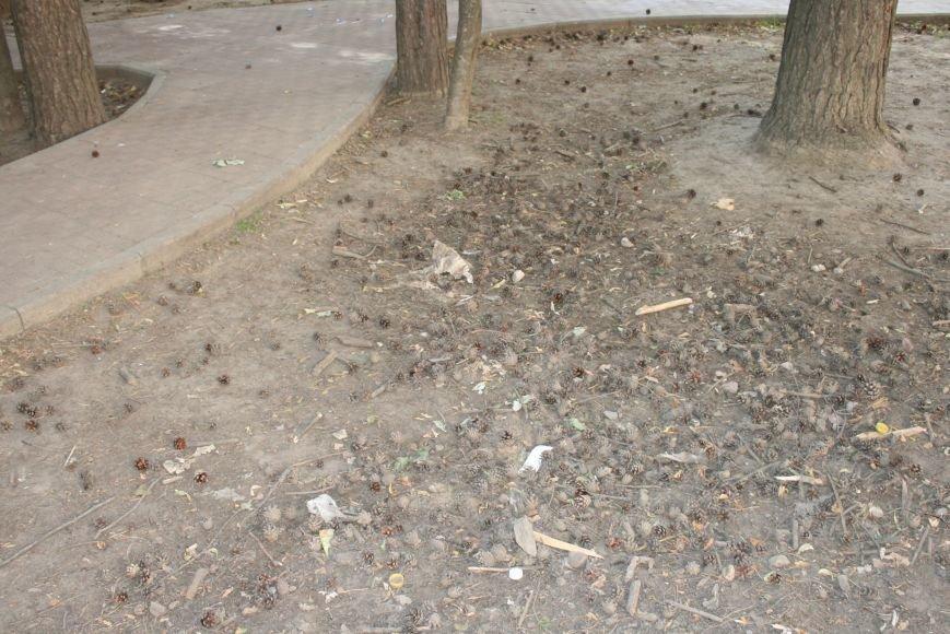 Жильцы новостроек выразили недовольство уборкой детской площадки в Троицке, фото-1