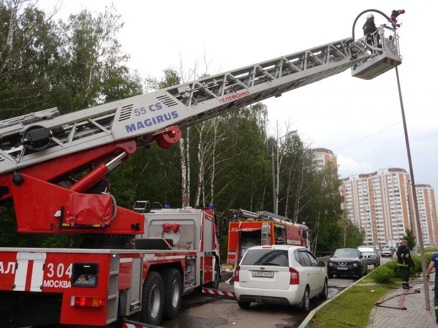 В Новой Москве случился пожар на 24 этаже дома, фото-1