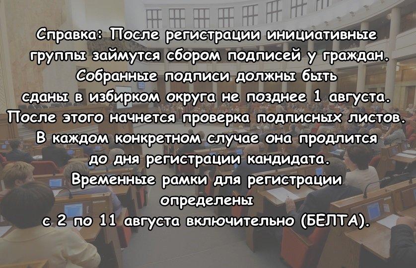 Полочанка Ольга Дамаскина: «Иду в парламентарии, чтобы восстановить уважительное отношение к закону», фото-1