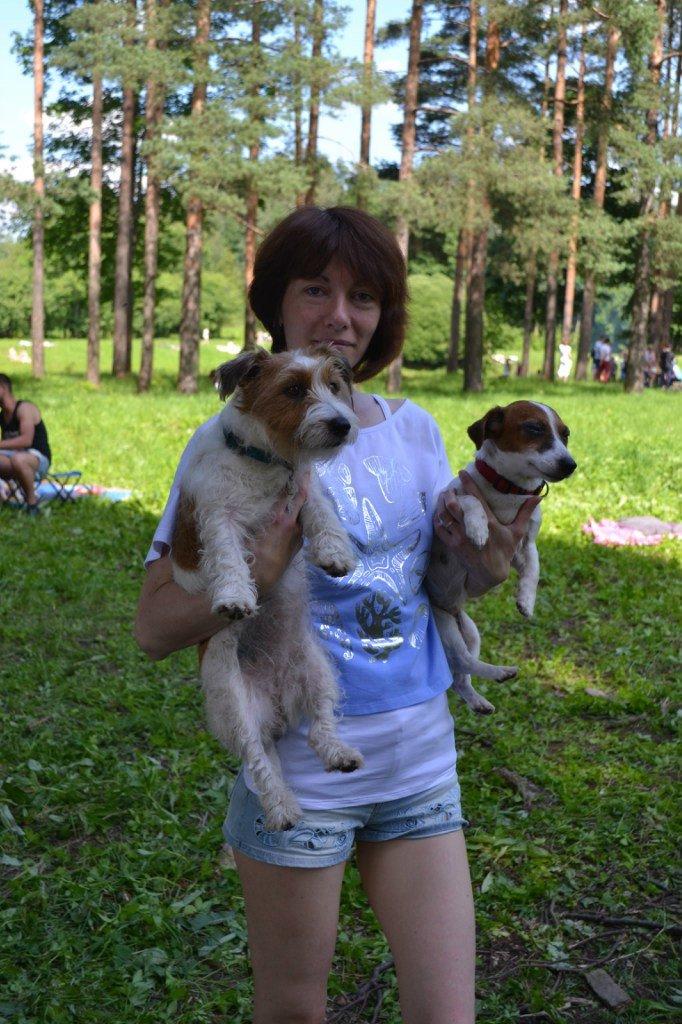 В Баболовском парке отметили день Джек рассел терьеров, фото-7