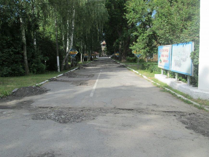 Невже влада звернула увагу на військових? Біля штабу бригади ремонтують дорогу, фото-4