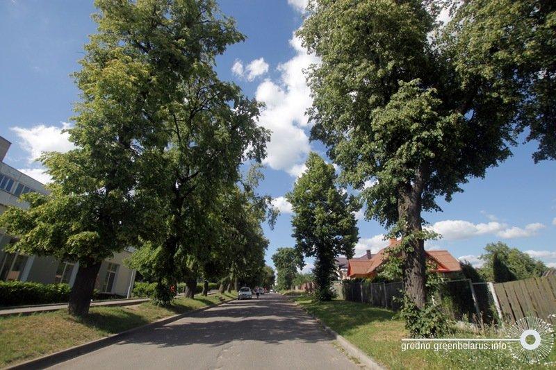 aleya_yakaya_vyadze_da_palacu_vul._cimirazeva