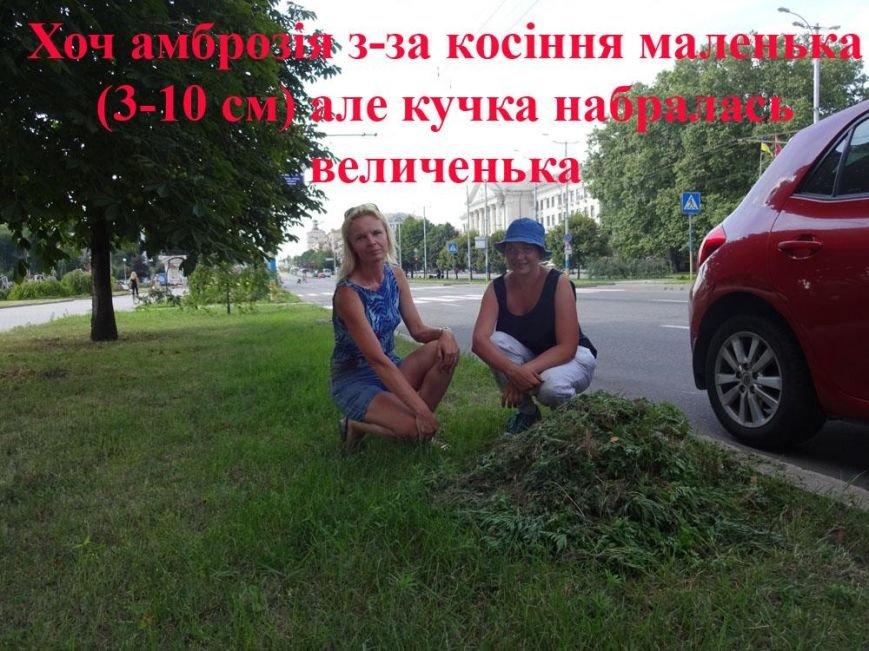 В Запорожье активисты очистили центральный проспект от амброзии, - ФОТО, фото-3