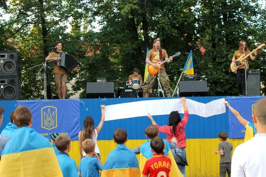 Українські зірки в Новогродівці, фото-19