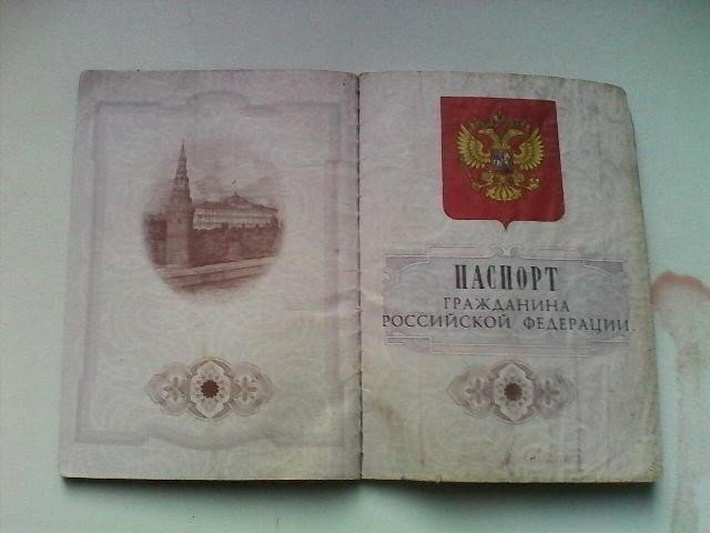 Признание захваченного в плен боевика: Я - гражданин России, старший лейтенант (ВИДЕО), фото-1