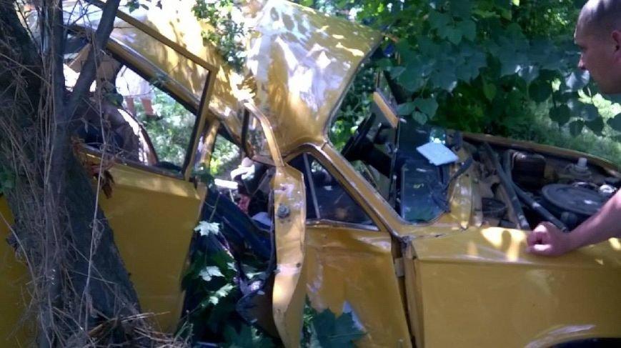 На трасі Київ-Чоп легковик з'їхав у к'ювет і врізався в дерево (ФОТО), фото-2