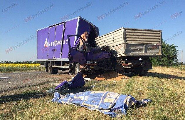 Под Бердянском столкнулись два грузовика: есть жертва (ФОТО), фото-3