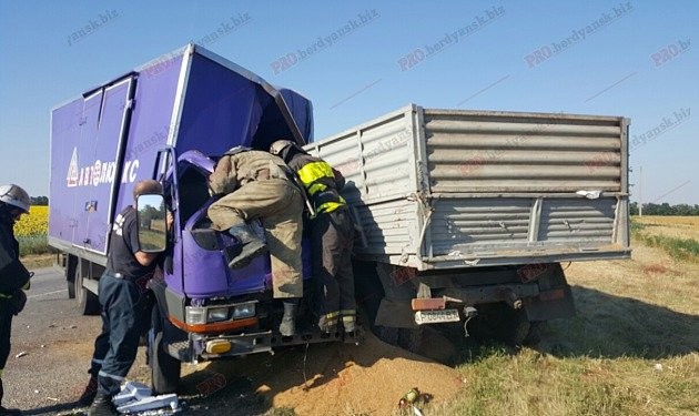 Под Бердянском столкнулись два грузовика: есть жертва (ФОТО), фото-2