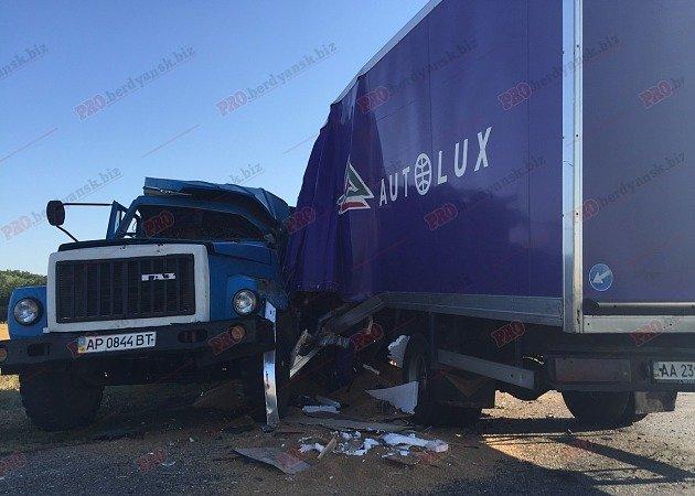 Под Бердянском столкнулись два грузовика: есть жертва (ФОТО), фото-1