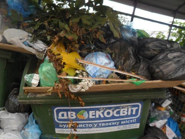 Львів'яни знову скаржаться на переповнені смітники (ФОТО), фото-2
