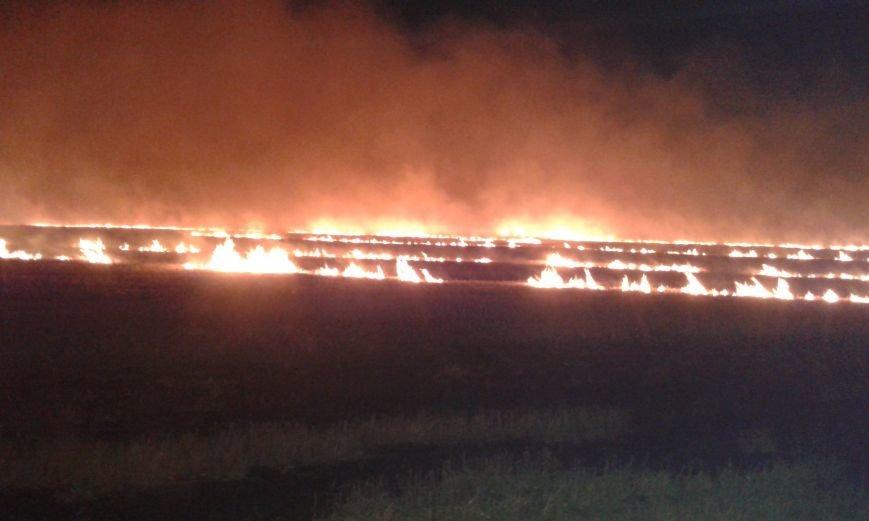 В Кировоградском районе выгорело 4 гектара сухой травы, фото-1
