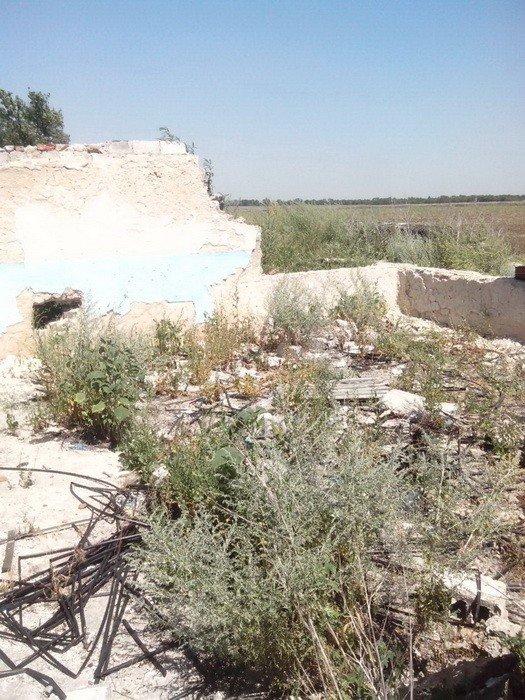 В Донецкой области обнаружили тайник с ракетами и снарядами (ФОТО), фото-1