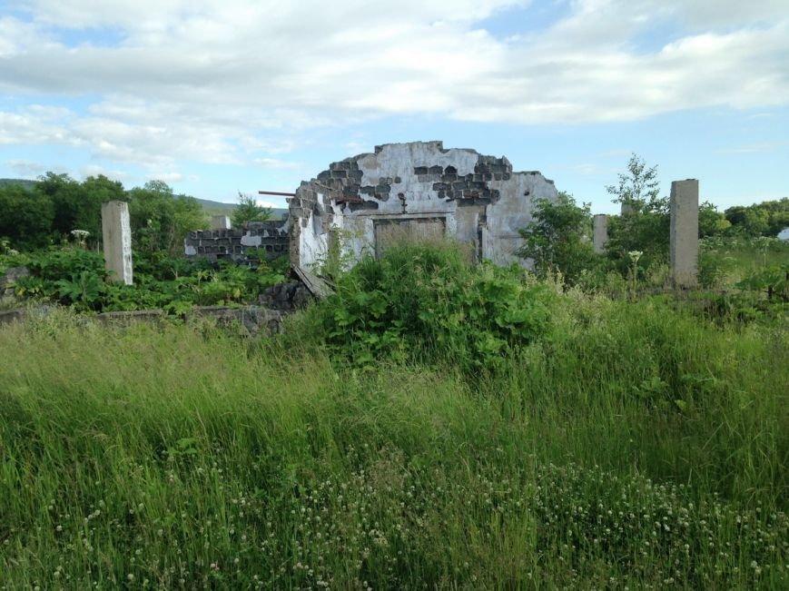 Хозяйство «Тимирязевское» на Сахалине сохранит статус экспериментального, фото-1