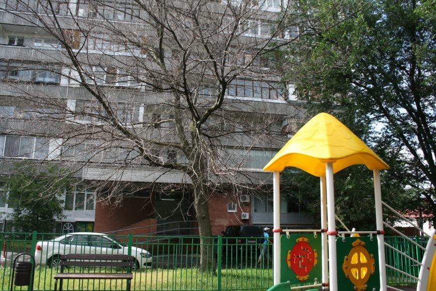 Опасное дерево у подъезда жилого дома Новой Москвы выпилят через 2 недели, фото-1
