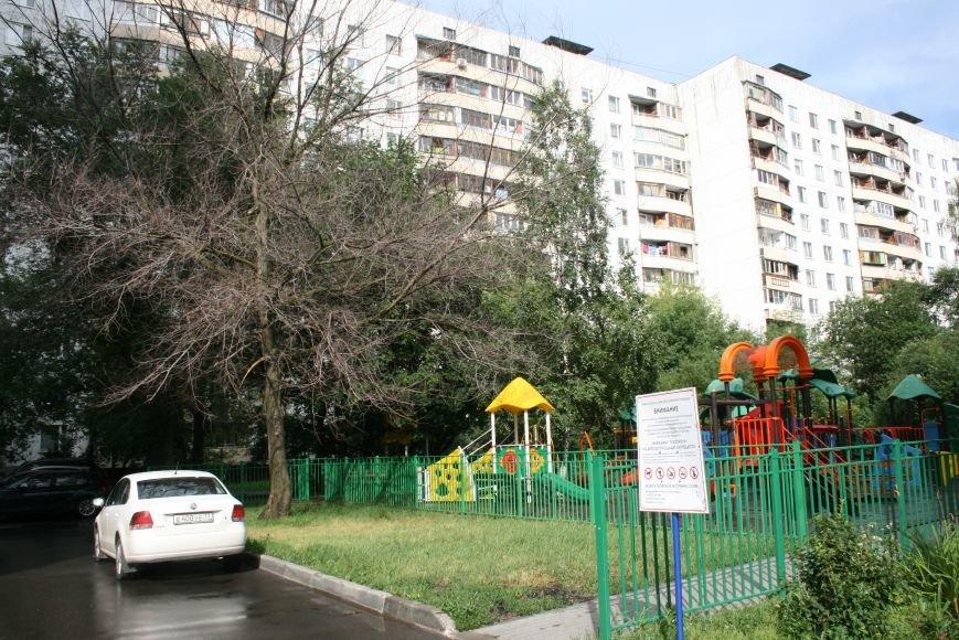 Опасное дерево у подъезда жилого дома Новой Москвы выпилят через 2 недели, фото-3