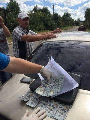В Бахмутском районе сельский голова требовал четыре тысячи долларов за оформление участка, фото-3