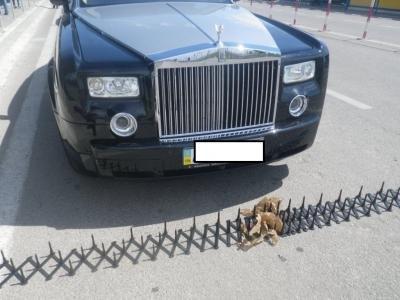 У возвращавшегося из Крыма украинца в КПП «Каланчак» пограничники отобрали Rolls-Royce (ФОТО), фото-1