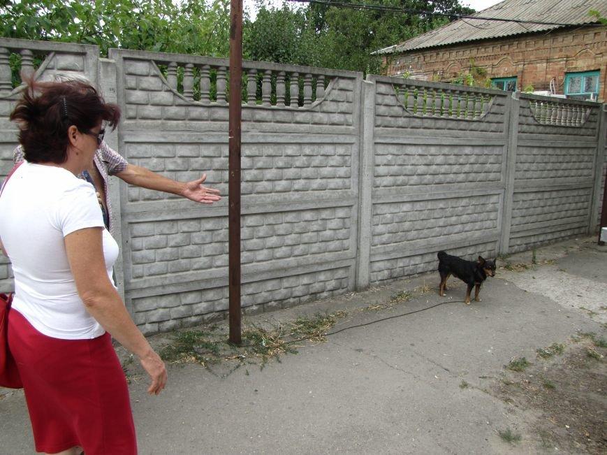 В Мелитополе привязанную дворняжку спасли от жажды, фото-1