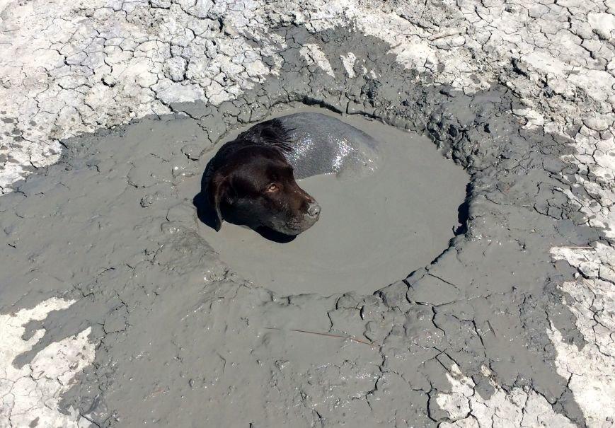 Туристы грязи не боятся: покорение Южно-Сахалинских грязевых вулканов, фото-8