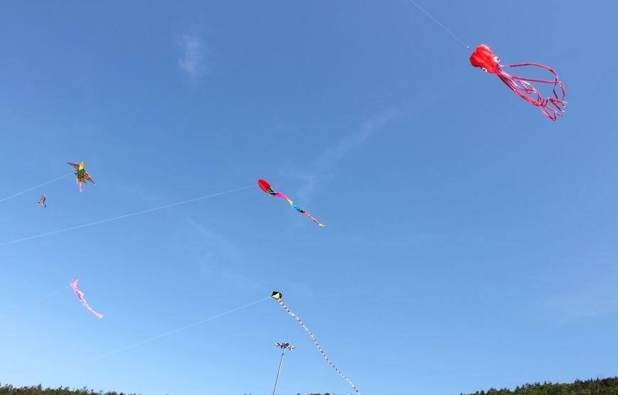 На «Горном воздухе» в Южно-Сахалинске запускали воздушных змеев, фото-2