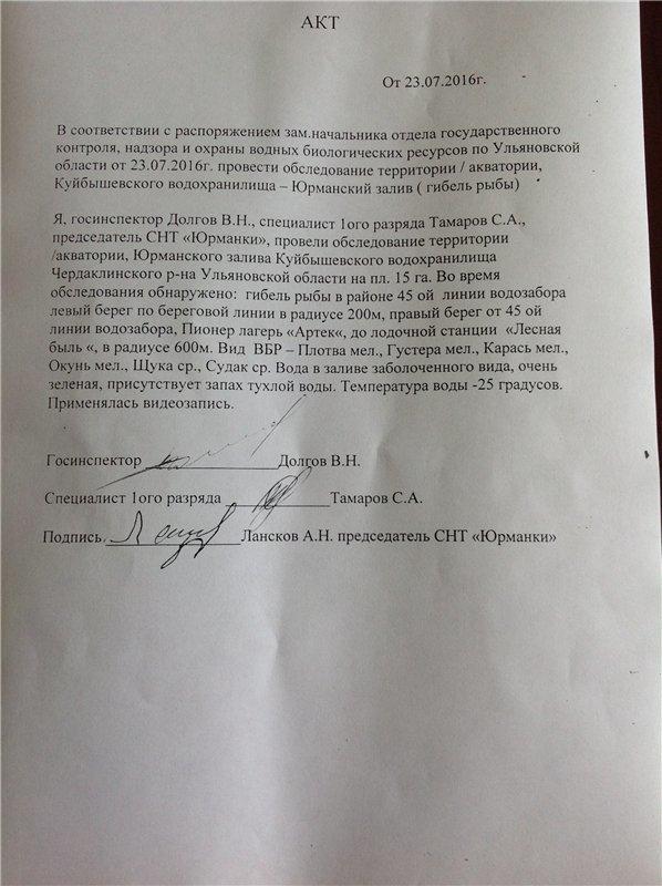Ульяновск обеспокоен массовой гибелью рыбы в Юрманках, фото-3