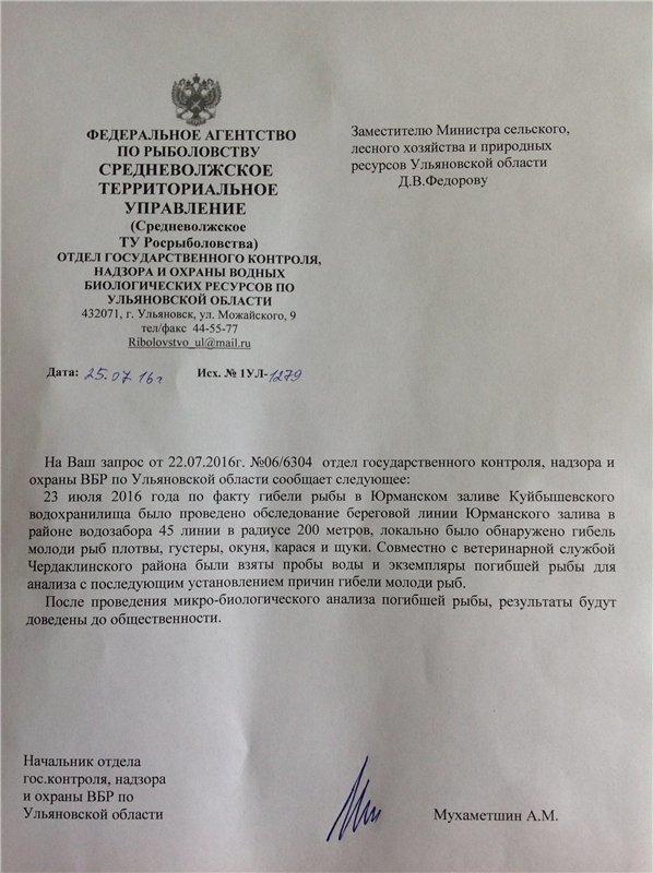 Ульяновск обеспокоен массовой гибелью рыбы в Юрманках, фото-2