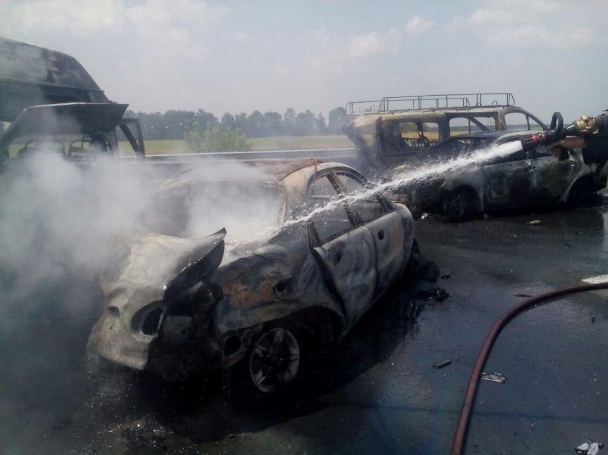 На Кировоградщине произошло ужасное ДТП, погибли трое людей, фото-4