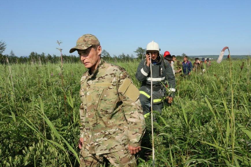 История с лесным пожаром на Сахалине наконец завершилась, фото-1