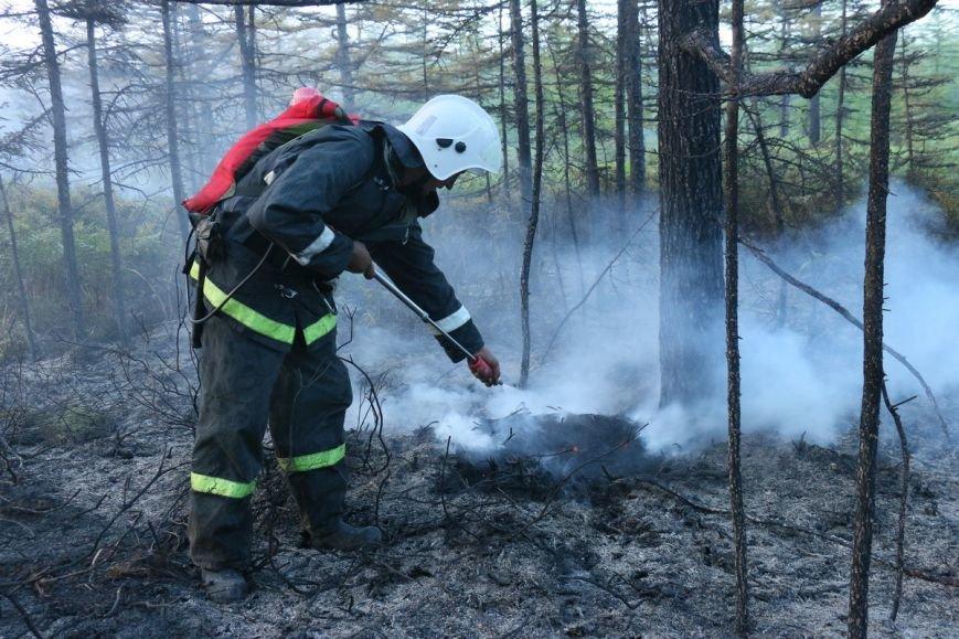История с лесным пожаром на Сахалине наконец завершилась, фото-2
