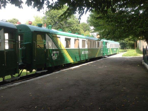 Мешканці міста вимагають відновити інфраструктуру Львівської дитячої залізниці (ФОТО), фото-5