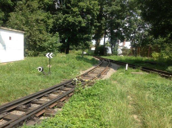 Мешканці міста вимагають відновити інфраструктуру Львівської дитячої залізниці (ФОТО), фото-1