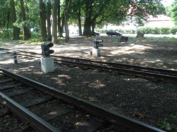 Мешканці міста вимагають відновити інфраструктуру Львівської дитячої залізниці (ФОТО), фото-6