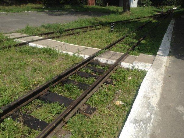 Мешканці міста вимагають відновити інфраструктуру Львівської дитячої залізниці (ФОТО), фото-4