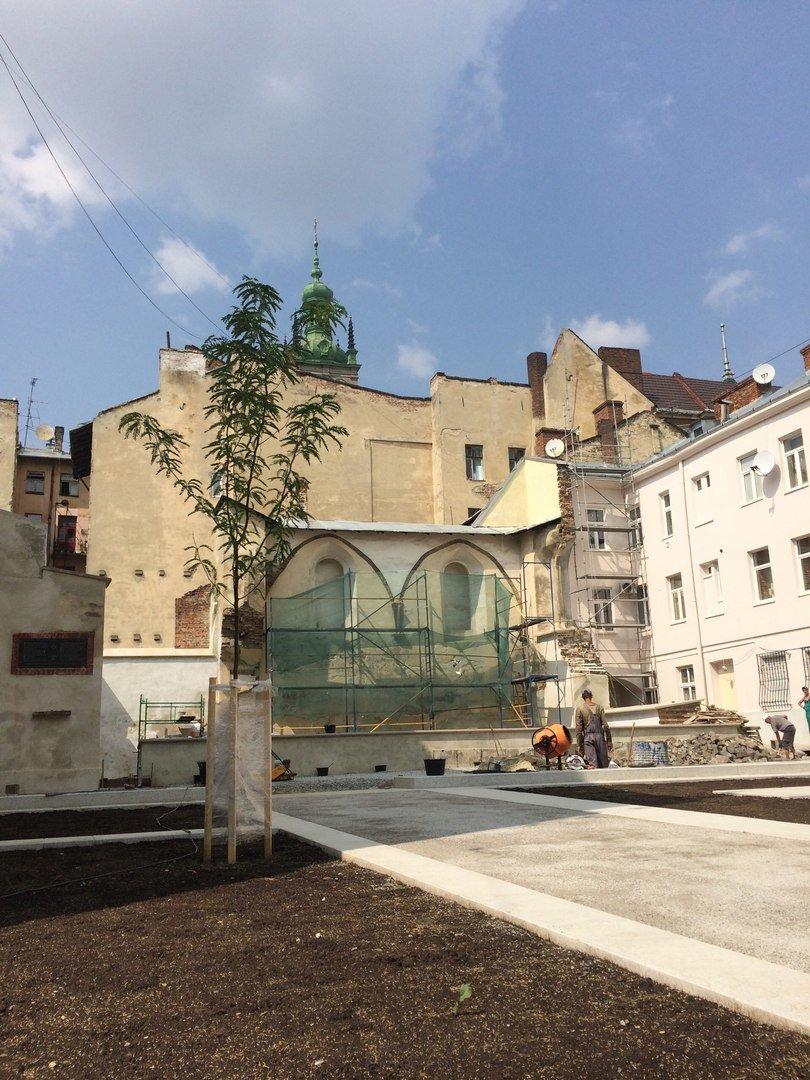 У єврейському кварталі Львова висадили перші дерева (ФОТО), фото-5