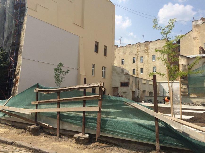У єврейському кварталі Львова висадили перші дерева (ФОТО), фото-2
