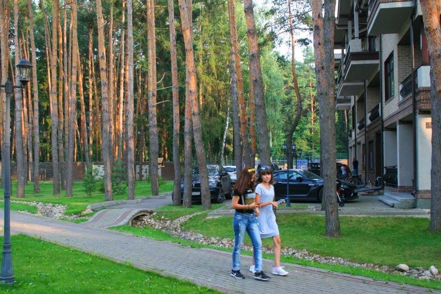 Жители микрорайона «Сосны» в Троицке ТиНАО хотят отделиться от города, фото-1
